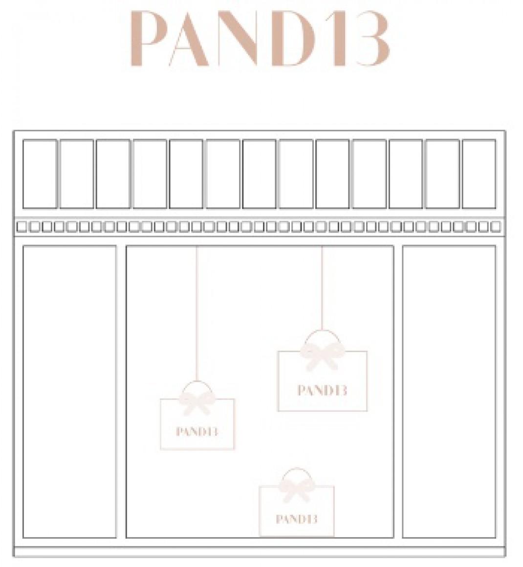 PAND13 News